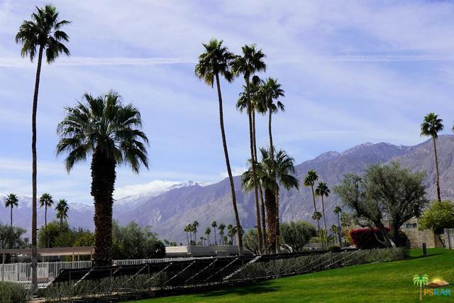 841 N Cerritos Drive, Palm Springs, CA 92262 (MLS #19437940PS) :: Brad Schmett Real Estate Group