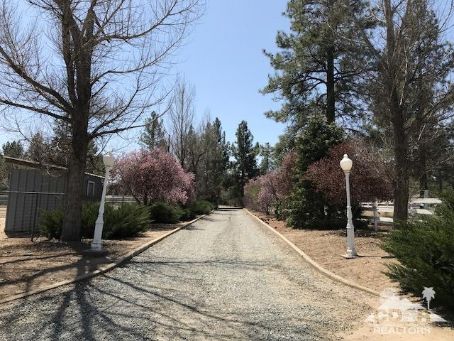 36581 Tool Box Spring Road, Mountain Center, CA 92561 (MLS #218011558) :: The John Jay Group - Bennion Deville Homes