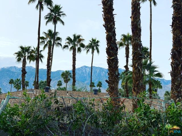1957 S Birdie Way, Palm Springs, CA 92264 (MLS #19433830PS) :: Deirdre Coit and Associates