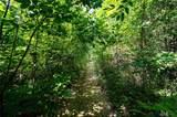 8551 Sycamore Trails Drive - Photo 59