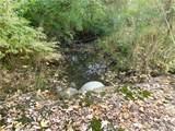 11383 Cov Bradford Road - Photo 41