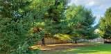 4861 Appaloosa Trail - Photo 33