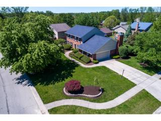 10 Tory Pines, Springboro, OH 45066 (MLS #736663) :: Denise Swick and Company