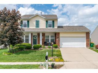 10281 Peacock Lane, Miamisburg, OH 45342 (MLS #737208) :: Denise Swick and Company
