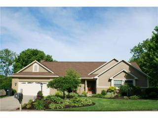 6753 Montpellier Boulevard, Centerville, OH 45459 (MLS #737500) :: Denise Swick and Company