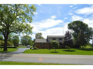 3260 Old Clifton Road, Springfield, OH 45502 (MLS #737619) :: Denise Swick and Company