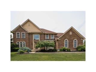 510 Stolle Drive, Springboro, OH 45066 (MLS #737478) :: Denise Swick and Company