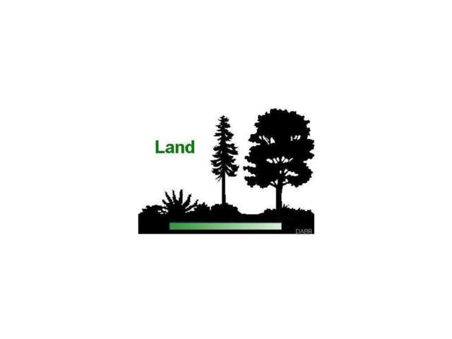 5 Osceola Road, Blanchester, OH 45107 (#719035) :: Bill Gabbard Group