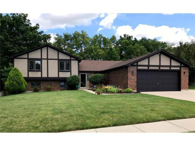 1048 Woods View Court, Miamisburg, OH 45342 (MLS #741546) :: Denise Swick and Company