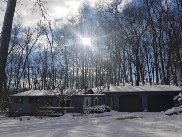 10489 Hazel Dell Road, Howard, OH 43028 (MLS #755289) :: Jon Pemberton & Associates with Keller Williams Advantage