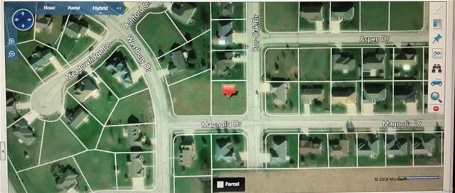 0 Magnolia, Greenville, OH 45331 (#760019) :: Bill Gabbard Group