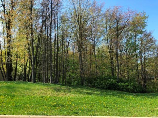 0 Woodlake Trail, Mt Vernon, OH 43050 (#763912) :: Bill Gabbard Group
