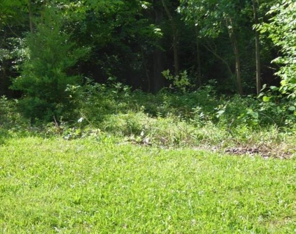 lot 17 Streamview Court, Bellbrook, OH 45305 (MLS #773574) :: The Gene Group