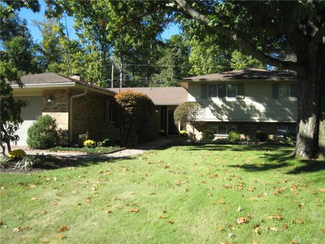 1245 Brainard Woods Drive, Dayton, OH 45458 (MLS #778036) :: Jon Pemberton & Associates with Keller Williams Advantage