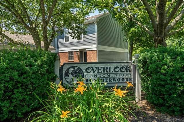 321 Elmwood Drive, Springboro, OH 45066 (MLS #820827) :: Denise Swick and Company