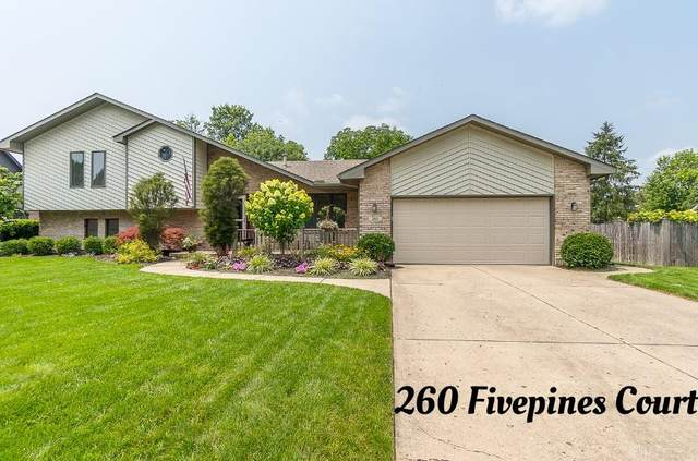260 Fivepines Court, Englewood, OH 45315 (MLS #845166) :: The Swick Real Estate Group