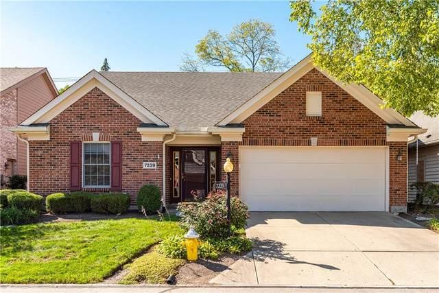 7239 Hartcrest Lane, Centerville, OH 45459 (MLS #849964) :: Bella Realty Group
