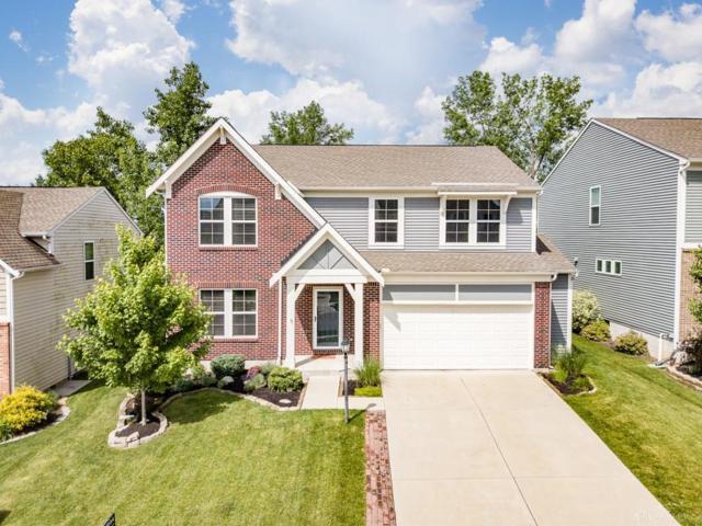 67 Shady Pines Avenue, Springboro, OH 45066 (MLS #792110) :: Denise Swick and Company