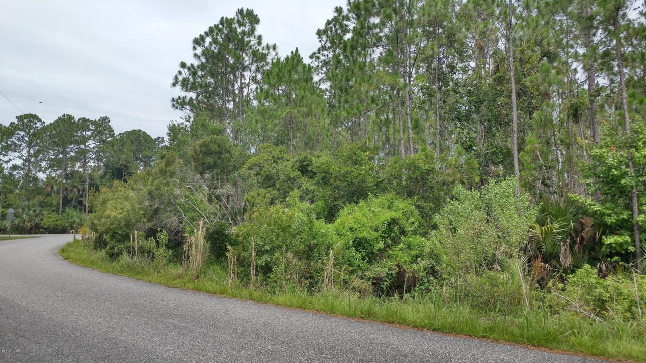 3230 Pheasant Trail - Photo 1