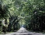 3059 Silvermines Avenue - Photo 14