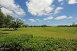 3301 Oak Vista Drive - Photo 55