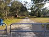 1737 Fern Park Drive - Photo 2