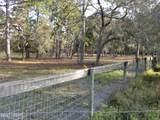 1737 Fern Park Drive - Photo 4
