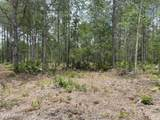 0 Volusian Forest Trail - Photo 12