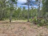 0 Volusian Forest Trail - Photo 9