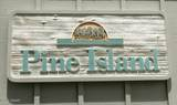 808 Pine Shores Circle - Photo 38
