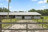 1328 Spring Garden Ranch Road - Photo 39