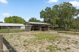 1328 Spring Garden Ranch Road - Photo 42