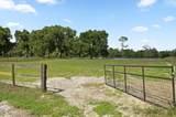 1328 Spring Garden Ranch Road - Photo 50
