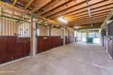 3550 Rodeo Acres Drive - Photo 60
