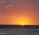 16 Sea Swallow Terrace - Photo 24