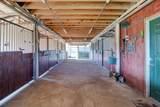 3550 Rodeo Acres Drive - Photo 53
