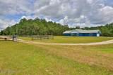 4607 Saddle Creek Run Road - Photo 11