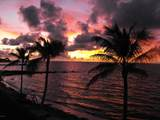 1001 Ocean Drive - Photo 4