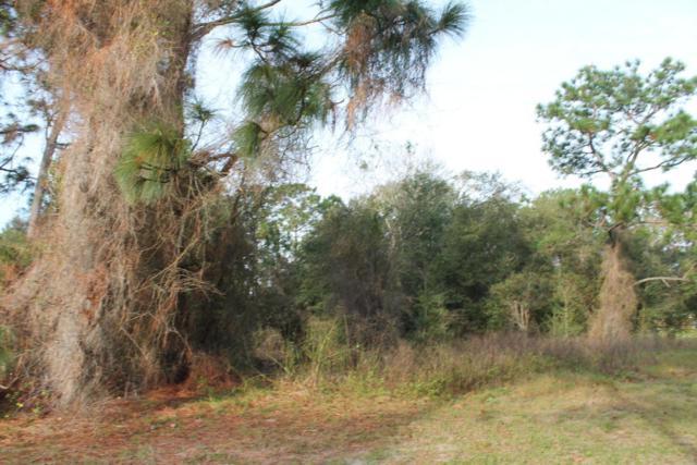 256 Fort Smith Boulevard, Deltona, FL 32738 (MLS #1017620) :: Beechler Realty Group