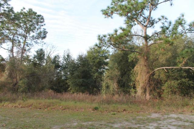260 Fort Smith Boulevard, Deltona, FL 32738 (MLS #1017621) :: Beechler Realty Group
