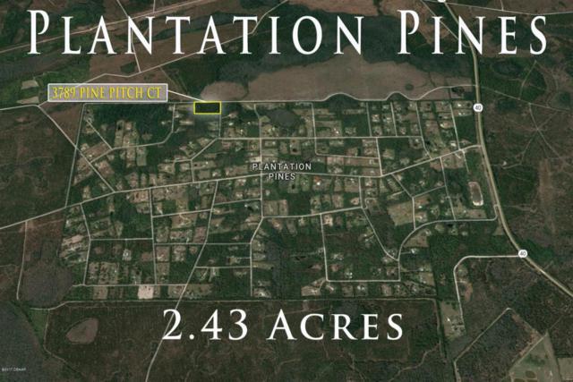 3789 Pine Pitch Court, Ormond Beach, FL 32174 (MLS #1032327) :: Beechler Realty Group