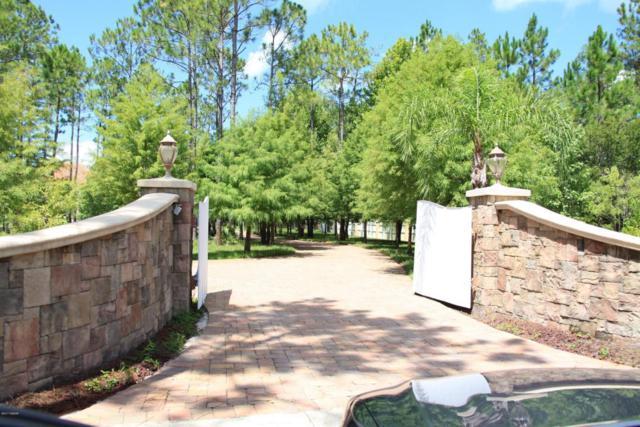 443 Juniper Lane, Ormond Beach, FL 32174 (MLS #1033923) :: Beechler Realty Group