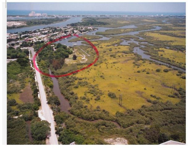109 Inlet Shores Drive, New Smyrna Beach, FL 32168 (MLS #1038120) :: Beechler Realty Group