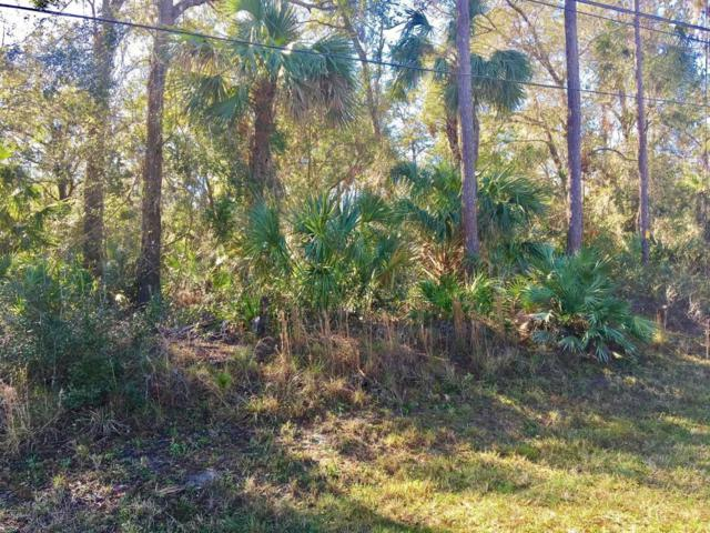 xxxx Taylor Road, Port Orange, FL 32128 (MLS #1039090) :: Beechler Realty Group