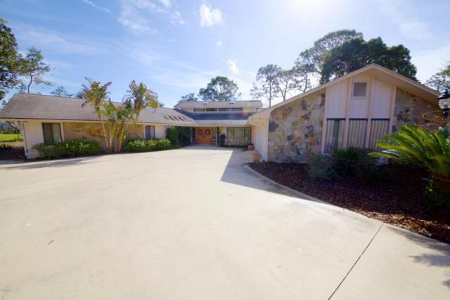 1086 Button Bush Place, New Smyrna Beach, FL 32168 (MLS #1039213) :: Beechler Realty Group