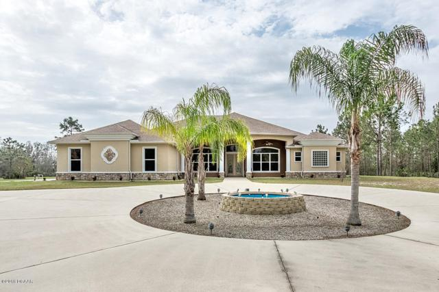2595 Echo Farms Drive, Port Orange, FL 32128 (MLS #1039384) :: Beechler Realty Group