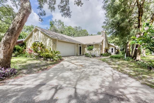 219 Briarfield Court, Ormond Beach, FL 32174 (MLS #1039417) :: Beechler Realty Group