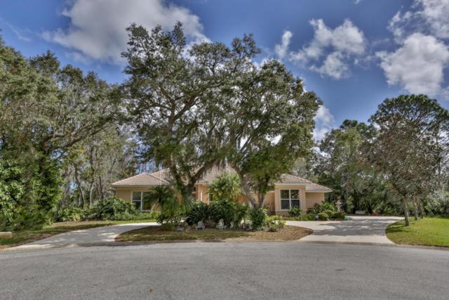2700 Autumn Leaves Drive, Port Orange, FL 32128 (MLS #1039764) :: Beechler Realty Group