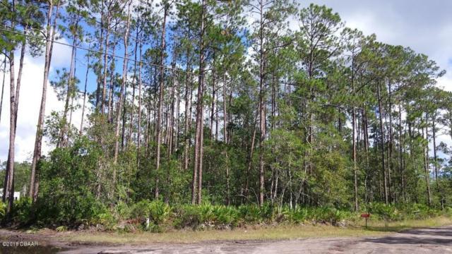 3658 Plantation Drive, Ormond Beach, FL 32174 (MLS #1040389) :: Beechler Realty Group