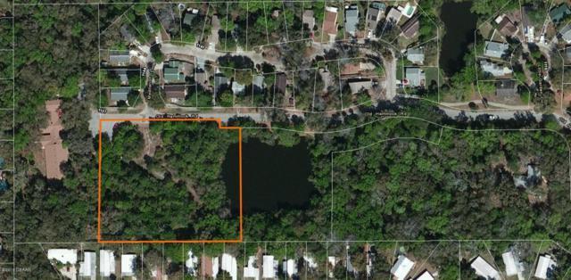 0 Old Hammock Road, Port Orange, FL 32129 (MLS #1040412) :: Memory Hopkins Real Estate